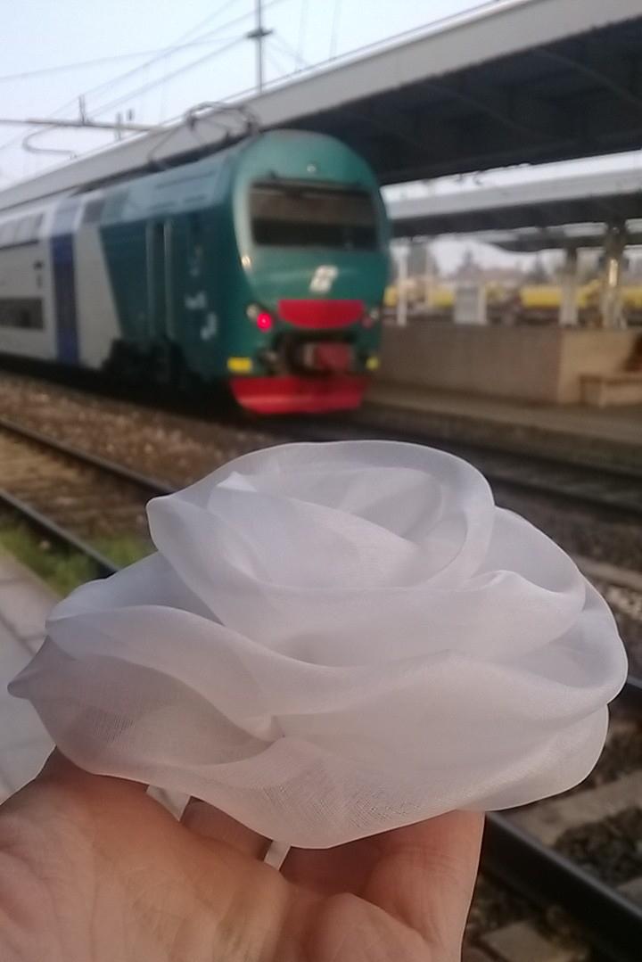 Il Gufo Spring Summer 2014 white organza rose