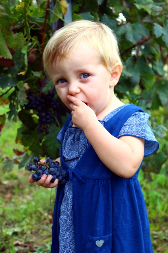 fannice-fashion-grape-harvest-winter-2014-03b