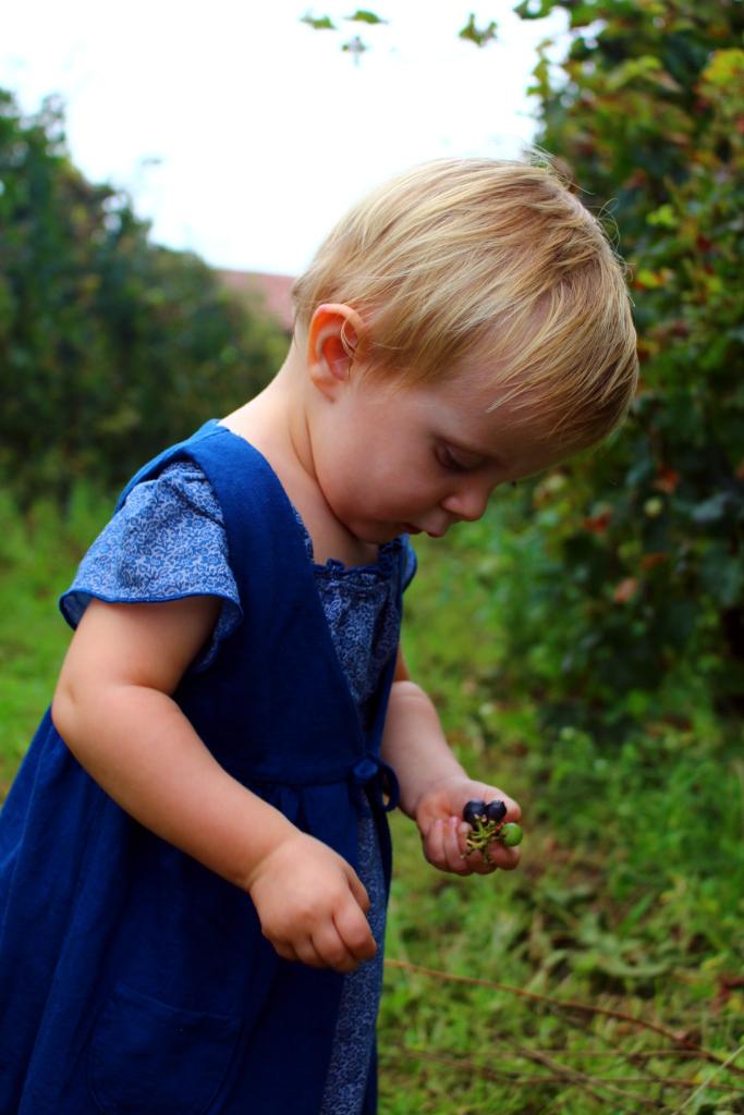fannice-fashion-grape-harvest-winter-2014-07
