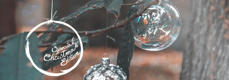 silvian-heach-winter-2014-header