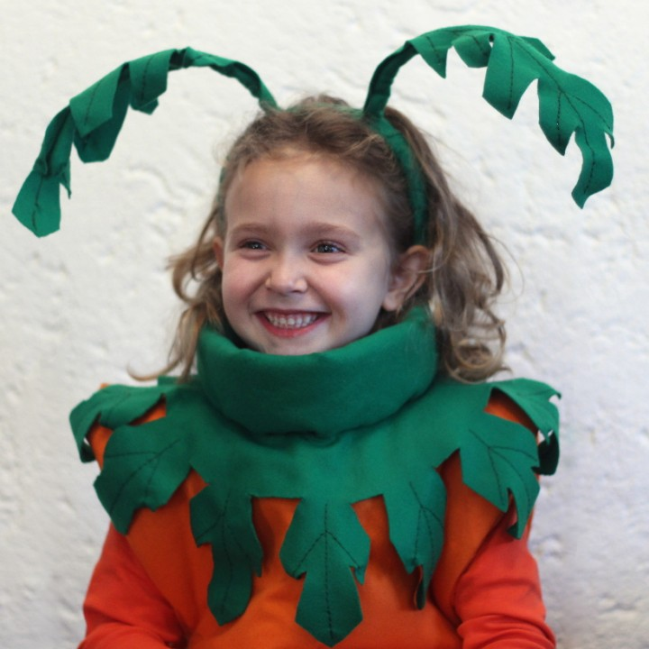 Carnival homemade kids costumes, Clara carrot (part III)