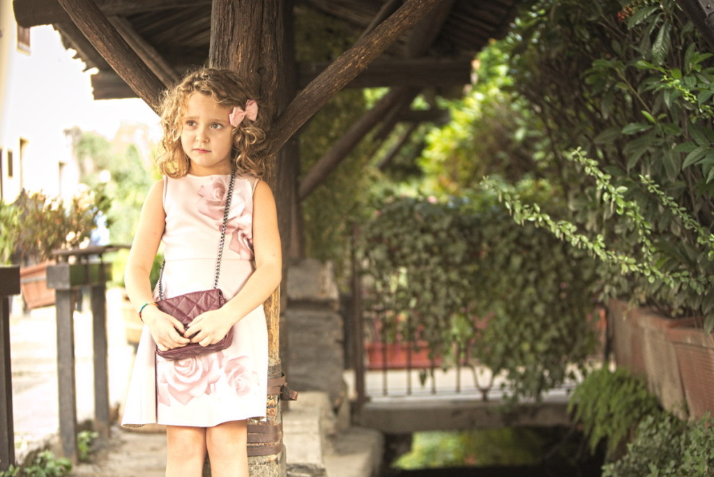 Elsy girl fall winter 2015 pink dress with roses