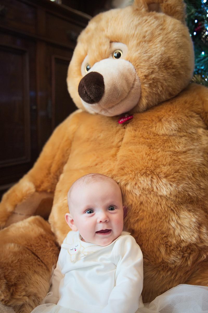 Trudi orso Ettore